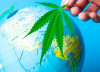 World wide weed: What are cannabis laws like around the world?