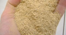 Why You Should Buy Kratom Extract
